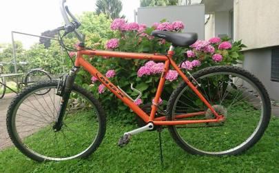 Bike Walschot