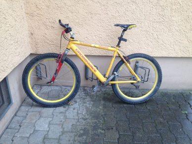 Familie Böckli Bike